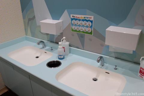 アイスプラント手洗い