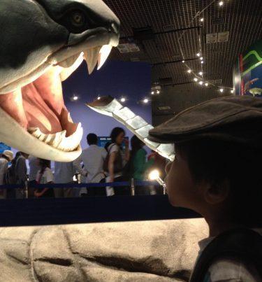 次の休みは子どもとどこへ行こうかな?恐竜に会えるおすすめ子連れスポット